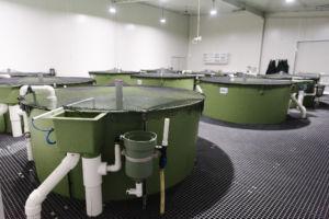 Tank Room 2