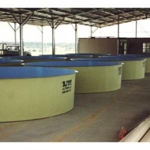 ajay-fibreglass-aquaculture-tank-1